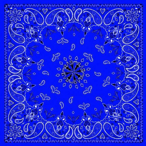Schwarz Paisley Tuch Blue Paisley 22Wx22L (Paisley Bandanas Blue)