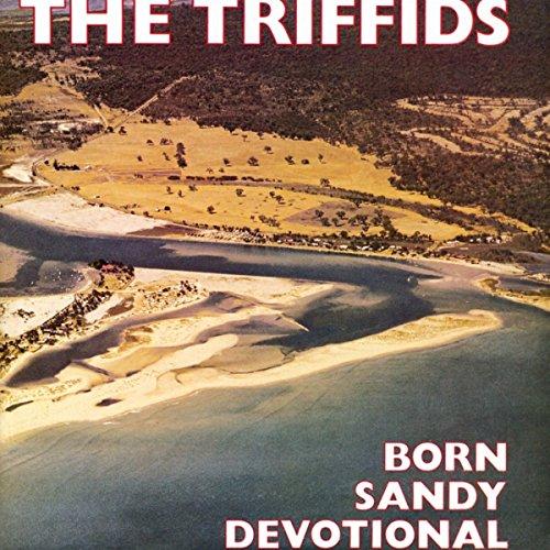 born-sandy-devotional