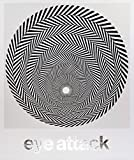 Eye Attack: Op Art and Kinetic Art 1950-1970