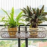 DYFYMXStand de plantes I balconi dell'inferriata che appendono i vasi che piantano il vaso da fiori d'attaccatura della parete delle verdure che appendono gli scaffali antichi antichi del fiore Pot de