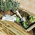 Catral 75010007Gemüsegarten 3Hohlräume Flat, Kiefer, 140x 60x 40cm von Catral - Du und dein Garten