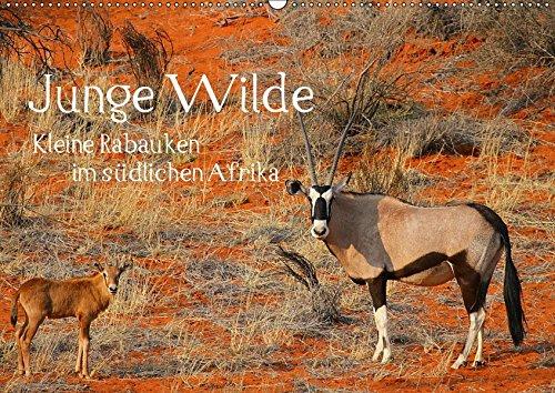 Junge Wilde - Kleine Rabauken im südlichen AfrikaCH-Version (Wandkalender 2019 DIN A2...