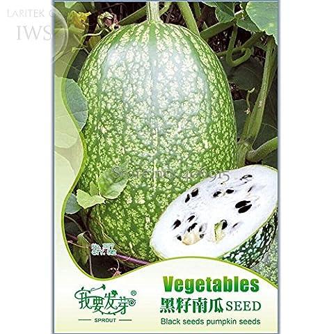 Heirloom Malabar Gourd Seeds, Original Pack, 8 seeds, fig leaf