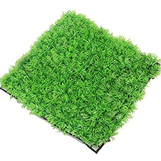24.5X24.5cm Artificial Square Green water Grass Lawn Plants Ornament Landscape for Fish Tank Aquarium Decorations 61ju6eiZk5L