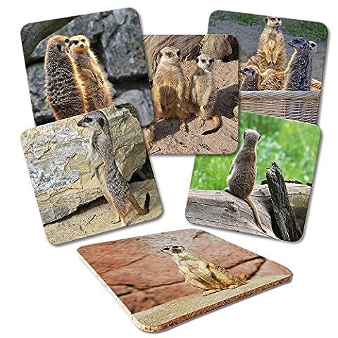 'ADDIES Verre Set de 6dessous de pièces imprimé motif suricate Kit complet présentée dans un coffret cadeau transparente et dos en liège Motif