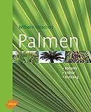Palmen. Botanik, Kultur, Nutzung - Wilhelm Lötschert