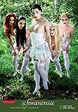 Schwanensee: Erotisches Bilderbuch: Erotisches Märchenbuch