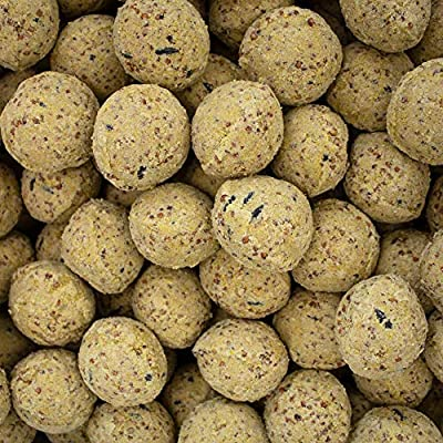 Leagrams Fat Balls without Nets - 150 and 300 from Leagrams