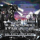 the Morning After: You Can'T Hurt Steel (Audio CD)
