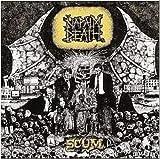 Songtexte von Napalm Death - Scum