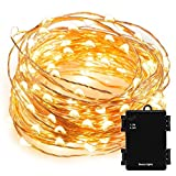 #3: Beauty Lights 3M 30LED Warm White Copper String Light 3 AA Battery Operated Decorative String Fairy Lights