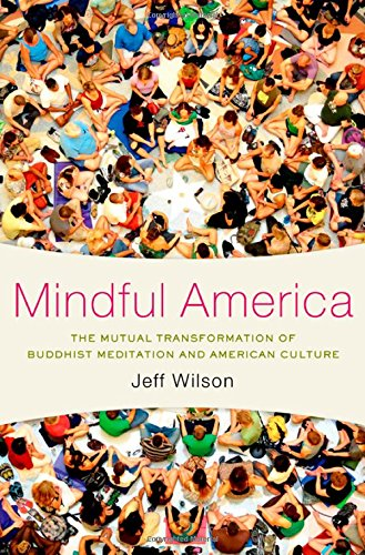 Mindful America: The Mutual Transformation of Buddhism Meditation and American Culture por Jeff Wilson