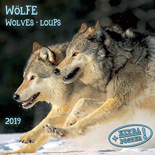 Wölfe - Wolves - Loups 2019 Artwork