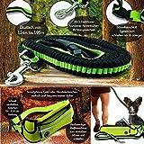 JogDog Premium Set: 3-in-1 elastische Hunde-Leine mit Bauch-Tasche,Freihand,Sicherheit Wasserdicht Jogging Gürtel Reflektor & Musik Ausgang Freihändig Laufen Hüft-Beutel