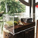 Generp Serbatoi per Animali Domestici Trasparenti in Acrilico Trasparente Box Serbatoi per Lucertola Chameleon Spider Snake Altri rettili
