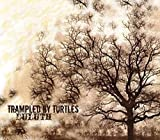 Songtexte von Trampled by Turtles - Duluth