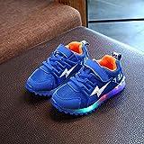 JINM Kinder Atmungsaktive Laufschuhe, leuchtende Gummisohle Mesh Sport Freizeitschuhe, Mädchen Jungen Anti-Rutsch Licht LED Leuchtende Schuhe mit Haken und Schlaufe Design, blau, 24