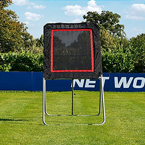 Net World Sports...
