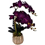 YATAI Artificial Orchid Flower Plant in Golden Ceramic Pot, Desktop Plant with Dry Moss grass in Pots, Real Touch Purple Flow