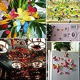 Imbry 72 Stück 3D Schmetterling Aufkleber Wandsticker Wandtattoo Wanddeko für Wohnung, Raumdekoration Klebepunkten+ Magnet (12 Blau + 12 Colour + 12 Grün + 12Gelb + 12 Rosa + 12 Rot) (Schmetterling) - 7