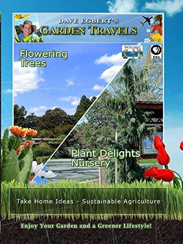 garden-travels-flowering-trees-plant-delights-nursery