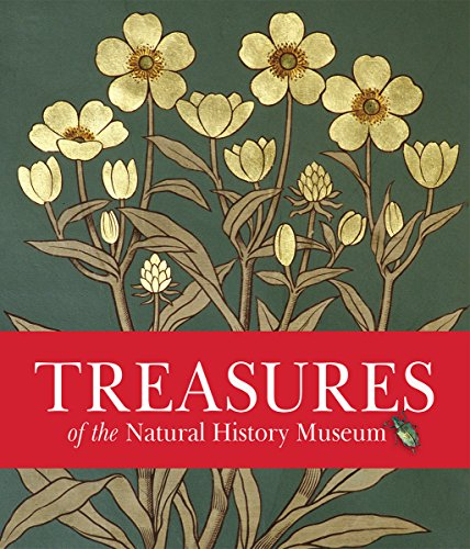 Treasures of the Natural History Museum: Pocket Edition