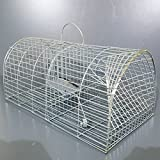 Rat Mouse Vermin Cage Trap Humane Animal Catcher Spring Pest Control No Poison