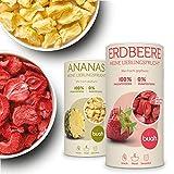 Buah Gefriergetrocknete Erdbeeren und Ananas - 2 Dosen mit 96g und 168g