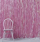 Ginger Ray Iridescent Holographic Foil Shimmer Tassel Curtain Decoration - Iridescent Party