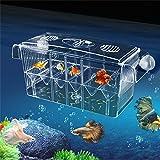 Somedays high-transparent self-floating multi-funzione pesce Incubatoio box doppio strato Fish Tank galleggiante Fish Aquarium Hatchery allevamento e Parenting box con Live Fry trappola