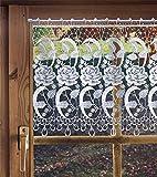 Scheibengardine aus Plauener Spitze, Spitzengardine ROSEN 38 cm hoch in unterschiedlichen Breiten