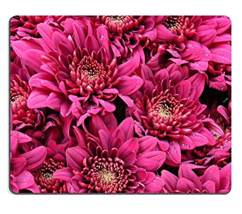 luxlady Gaming Mousepad Bild-ID: 22254592Rose Chrysanthemum Blumen England England Rosa Rose
