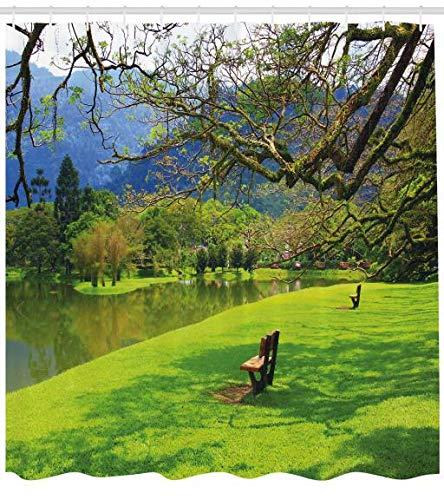 ABAKUHAUS Natur Duschvorhang, Panorama-Publikum wiev, Klare Farben aus Stoff inkl.12 Haken Farbfest Schimmel und Wasser Resistent, 175 x 180 cm, Kalk Grün violett