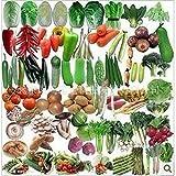 GETSO 50Pcs Balcone Seme Pacchetto Verdura Mix Caldo Semi di ortaggi biologici
