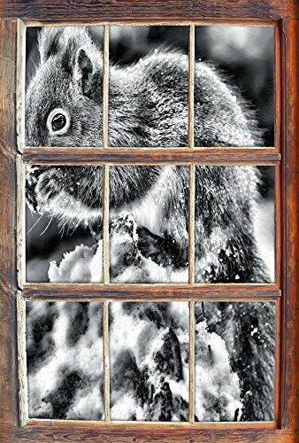 monocrome-kleines-eichhornchen-im-winter-fenster-im-3d-look-wand-oder-turaufkleber-format-92x62cm-wa