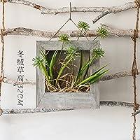 Suchergebnis auf Amazon.de für: Wand - Kästen / Pflanzengefäße ...