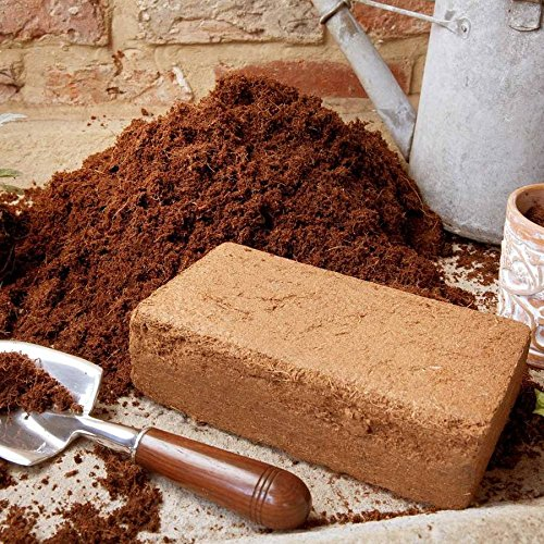 1-x-9l-compressed-coir-compost-bricks-end-of-season-sale