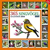 365 Singvögel 2018 - Broschürenkalender - Wandkalender - mit Poster und Sound-App - Format 30 x 30 cm