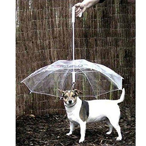 UEETEK Novedad paraguas de mascota perro con cadena para días lluviosos