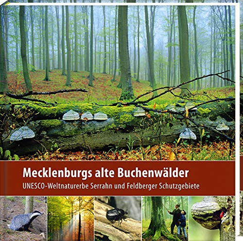 Mecklenburgs alte Buchenwälder (2. Aufl.): UNESCO-Weltnaturerbe Serrahn und Feldberger Schutzgebiete