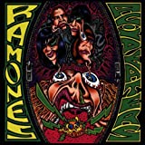 Songtexte von Ramones - Acid Eaters