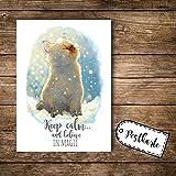 ilka parey wandtattoo-welt® A6 Postkarte Ansichtskarte Flyer Katze im Schnee mit Spruch keep calm and believe in magic pk098