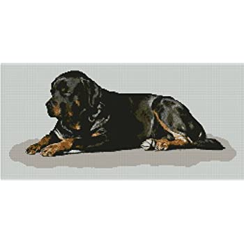 "Rottweiler 2 Counted Cross Stitch Kit 11.5/"" x 12.5/"""