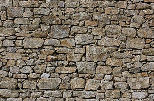 Highland Stein (JP London spmurlt2556Ziegelsteinwand abnehmbarer Wall Mural Hand aus Englisch Stein Mauer Highland Kuh Frence bei 61cm hoch x 91,4cm breit)