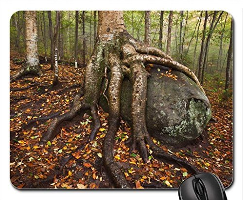 Adirondack State Park, New York Mouse Pad, Mousepad (Forests Mouse Pad)