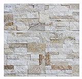 W-010 Wand-Design Verblender Quarzit Wandverkleidung Steinwand - 1 Muster - Naturstein Fliesen Lager Verkauf Stein-Mosaik Herne NRW