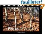 Feuilles et arbres : Captiv� par les...