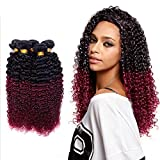 morningsilkwig Grade 6 A Tissage naturels-vin schwarz (Dark Wine) Ohrringe crepus Brasilianische Haar Jungfrauen Kinky Curly Menschenhaar Weave 50 Gramm P. Bundle