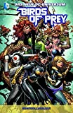 Birds of Prey Megaband, Bd. 1: Kontrollverlust bei Amazon kaufen