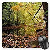 HYYCLS Landscape Mauspads, Pine River in Fall Forest Faded Maple Leaves Deciduous Trees in Autumn, Standard Size Rectang